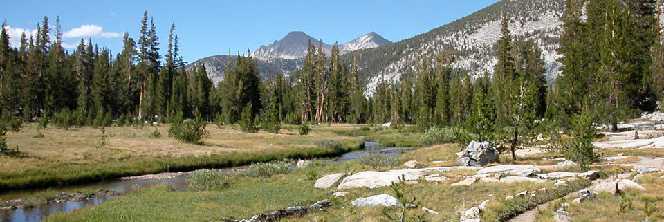 photo of Rosemarie Meadow on the upper part of Bear Creek, John Muir Wilderness, CA