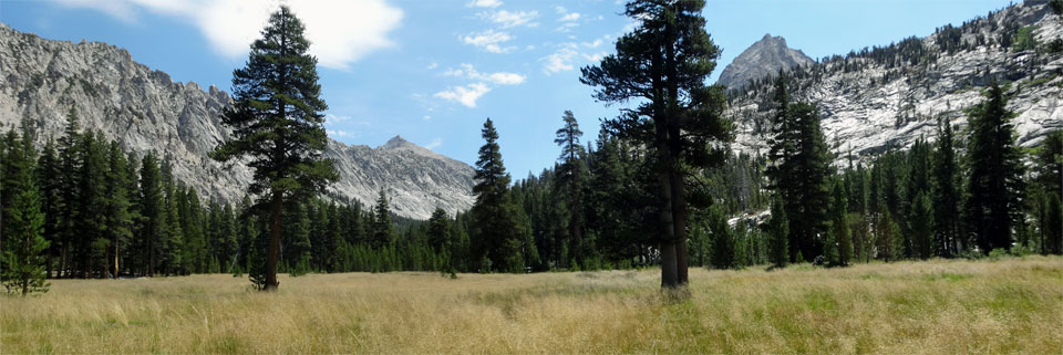 photo of Vidette Meadow in Kings Canyon National Park, CA